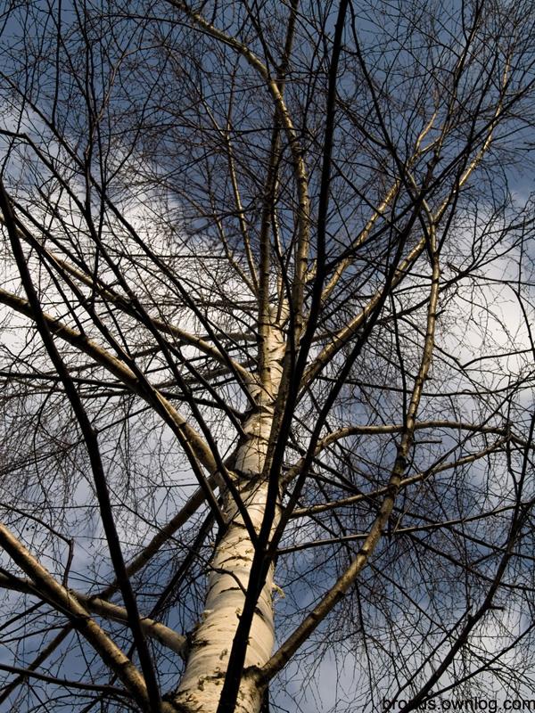 Zdjęcia z przełomu zimy i wiosny